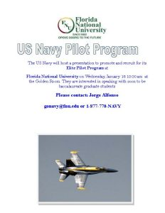 US Navy Pilot Program