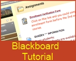 How to get started with Blackboard
