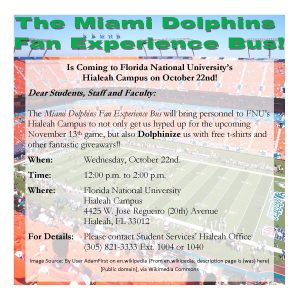 dolphin experience bus flyer