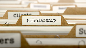 "Files with a ""scholarship"" tab"