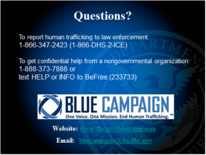 Blue campaign contact information