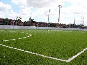 Goodlet Park Soccer Field close up