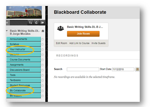 Bb Collaborate & Your Instructor Sections