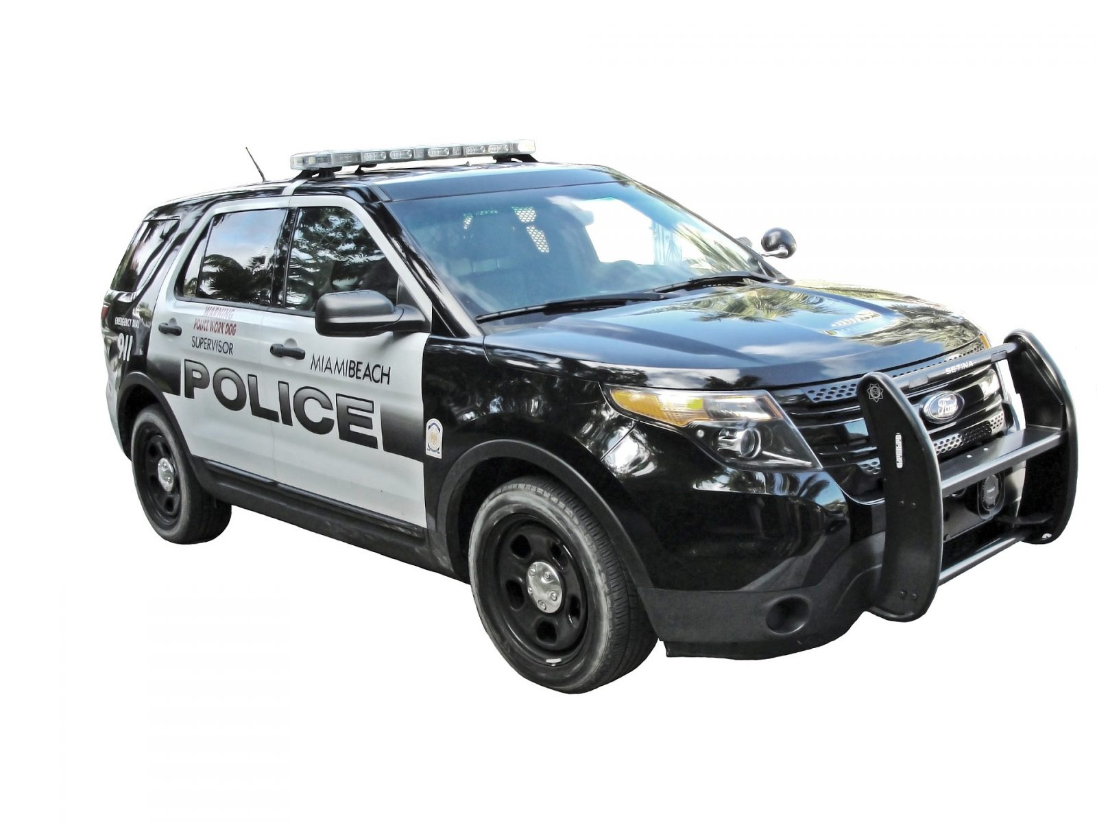 criminal justice degree police vehicle