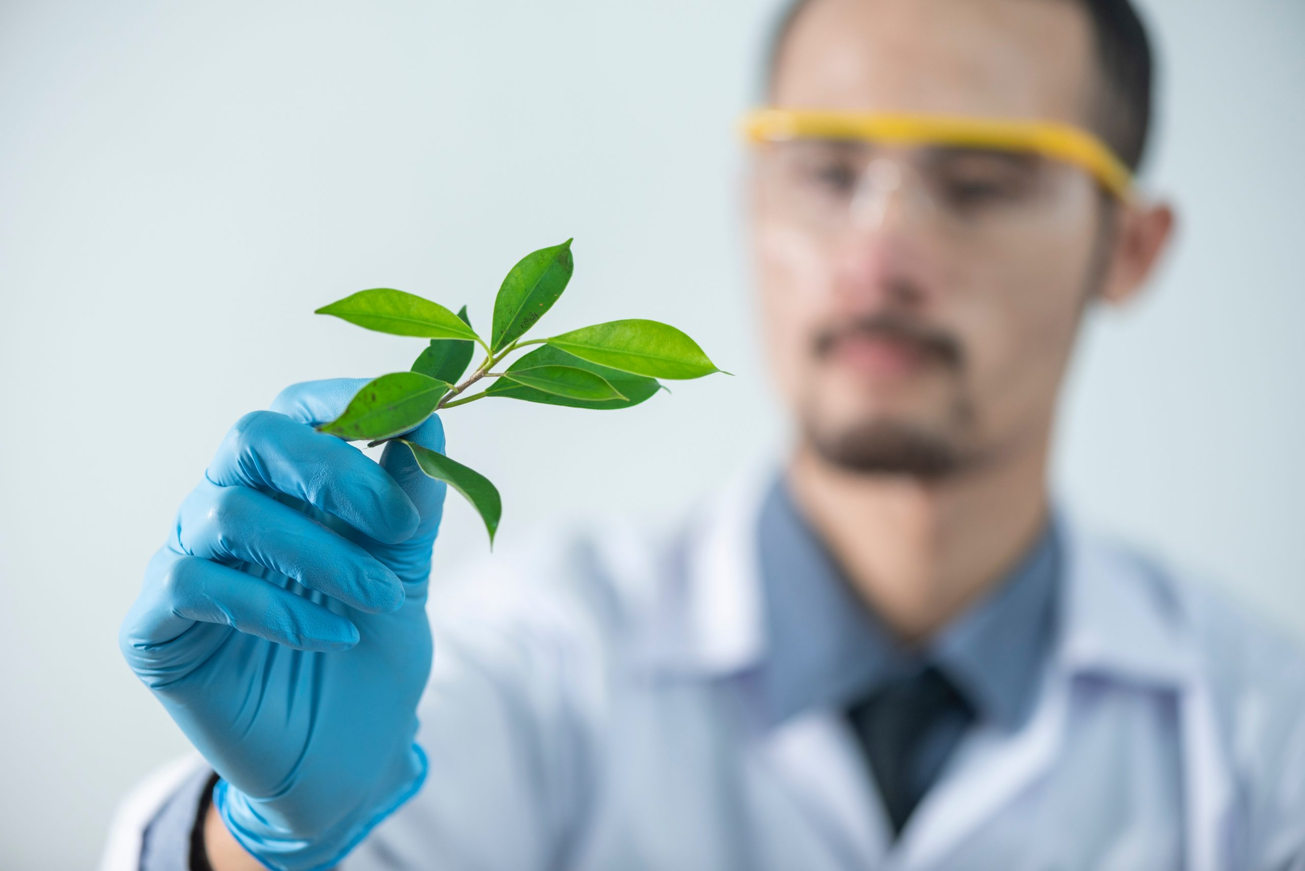 What Can You Do with a Degree in Natural Science?