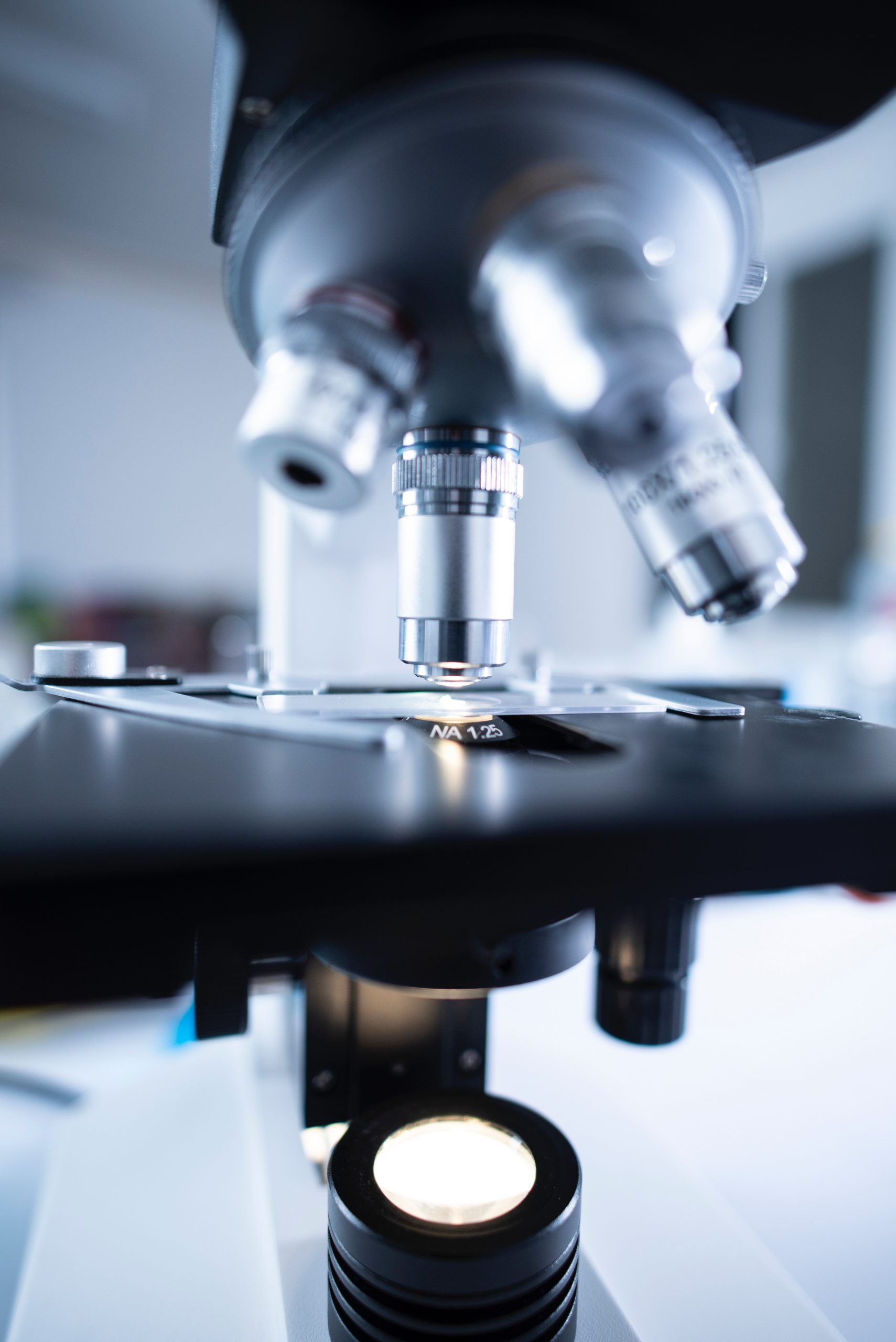 Natural Sciences Courses You'll Take at Florida National University